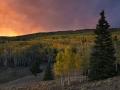 blazing_autumn-30724f980e1df93b7af1c3dd86b1e26351877847