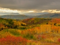 rainbow-ridge-sg-500-388c9562145cd56e246d8980df1481cff7df9228
