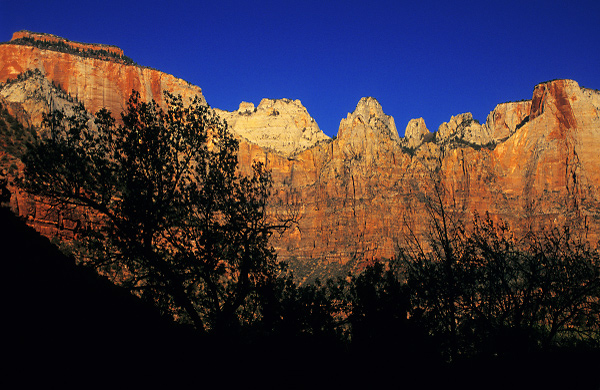 Shadows of Zion