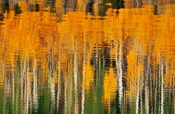 Aspen Reflection, Mesa Lakes, Grand Mesa, Colorado