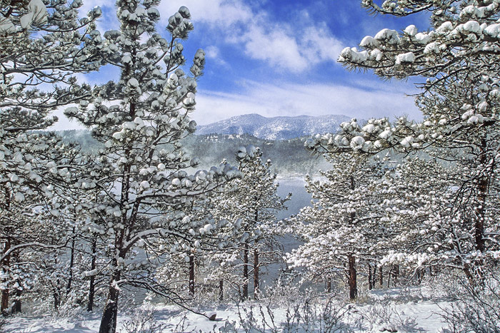 Carter Lake Colorado Snow