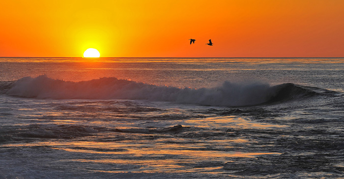 Two pelicans fly over crashing waves during sunset at La Jolla Cove.