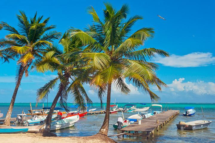 Palms, San Pedro, Belize